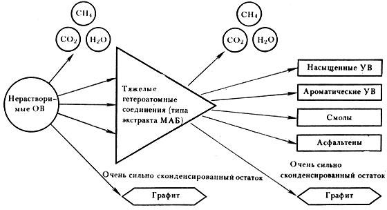 Схема превращения керогена в