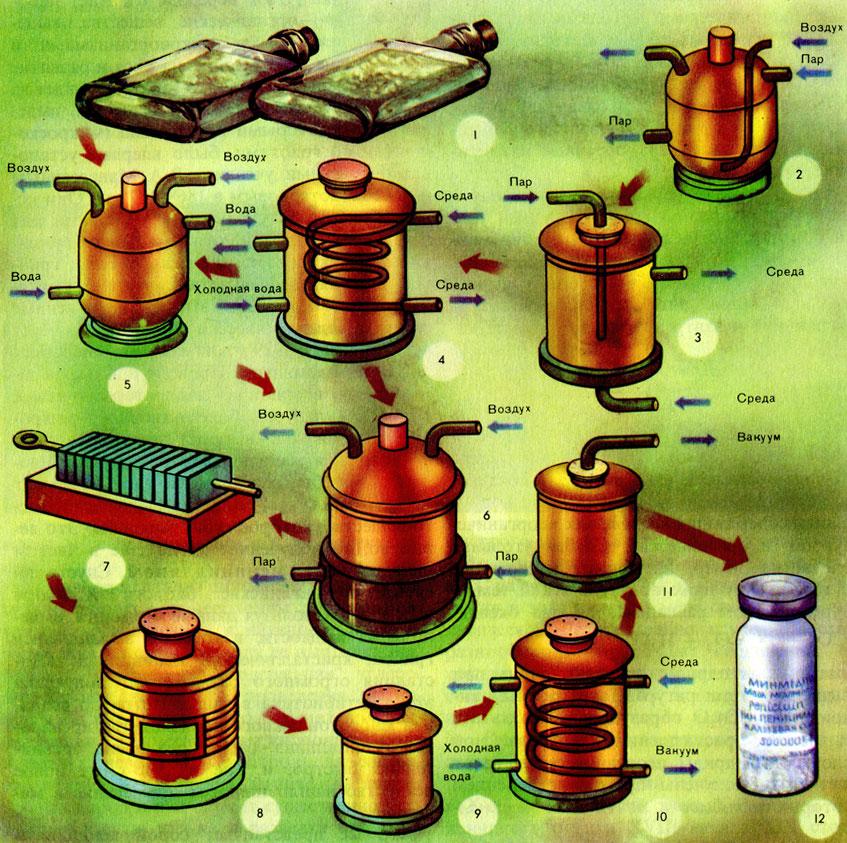 Схема получения пенициллина: 1