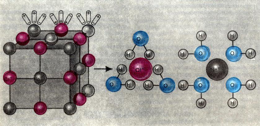 Ионы натрия и хлора в растворе